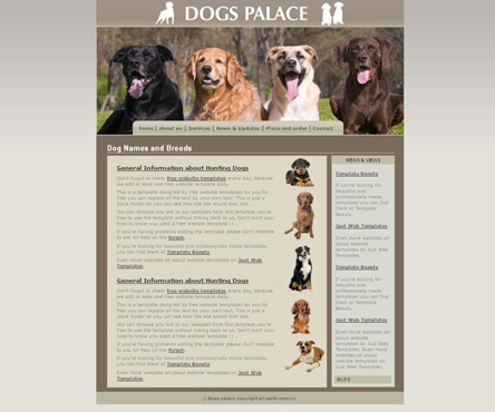 Dog care website designing